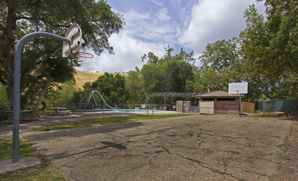 drought tolerant landscaping, santa barbara landscape, montecito landscape design,