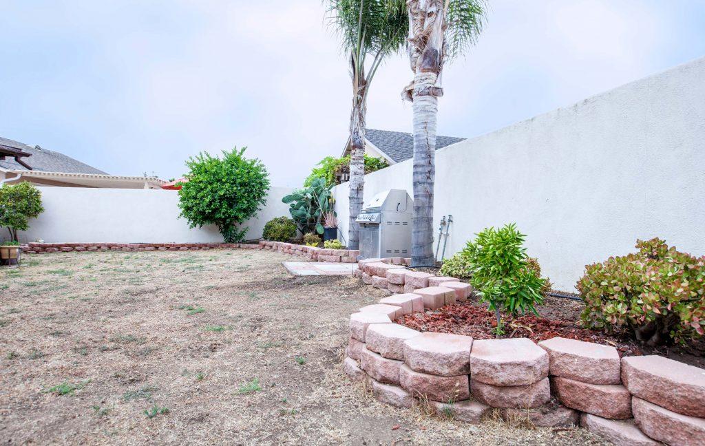 yard, palms, bbq,