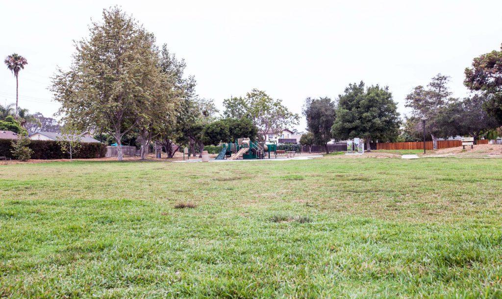 park, grass